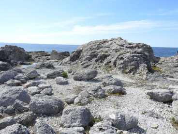 Raukar och sten i massor